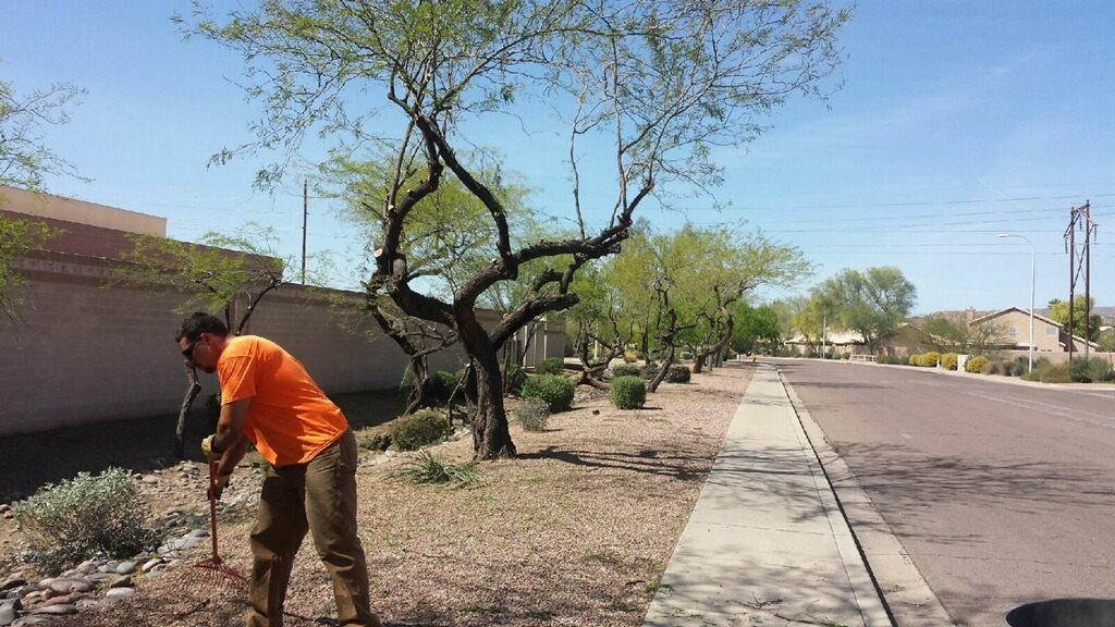 landscapers-american-workers