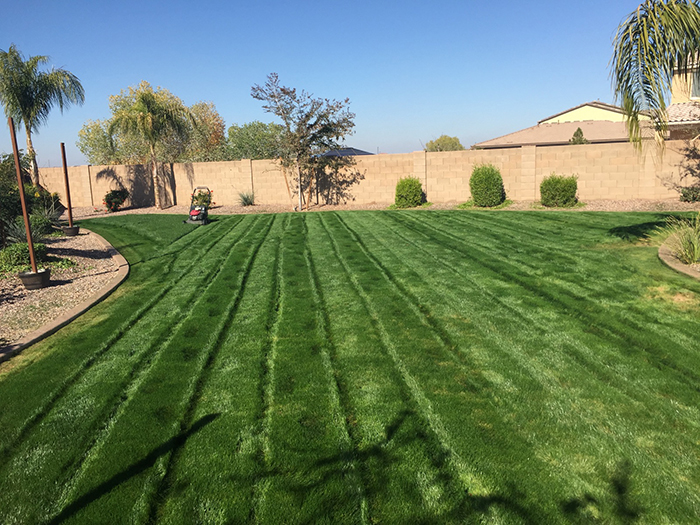 lawn-mowing-in-gilbert-az