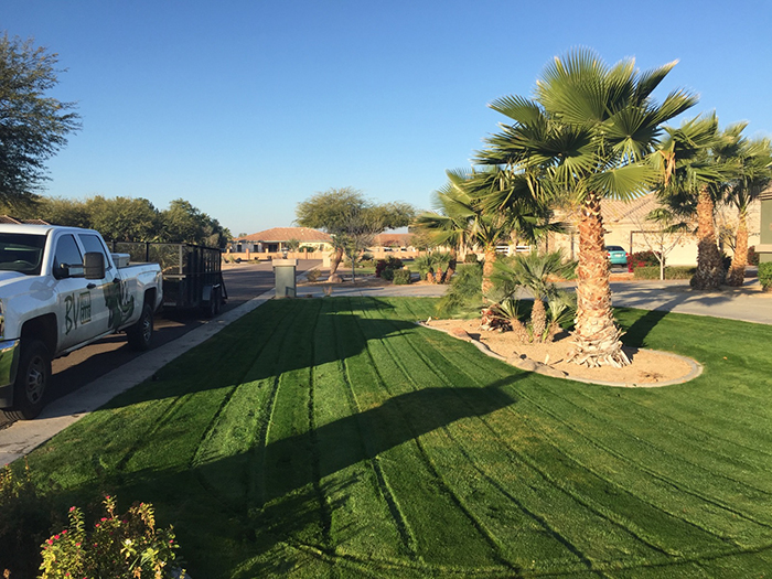 residential-lawn-care-queen-creek